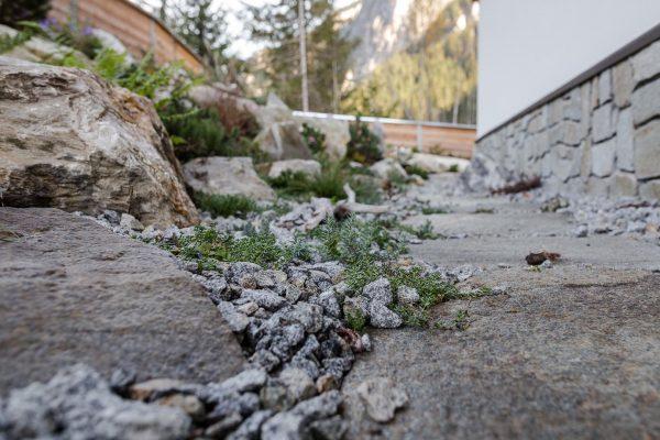 Alpine Gärtnerei